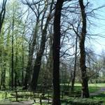 Am Schloss Burgkemnitz grenzt ein anmutiger Park mit mehreren Teichen