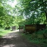 Unweit des Schlosses kann ein vom Heimat- und Naturverein angelegtes Arboretum – ein Garten mit verschiedenen Baum- und Straucharten  besichtigt werden.